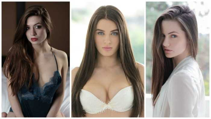 7 most beautiful adult film actresses in the world